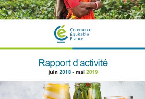 Rapport d'activité 2018-2019