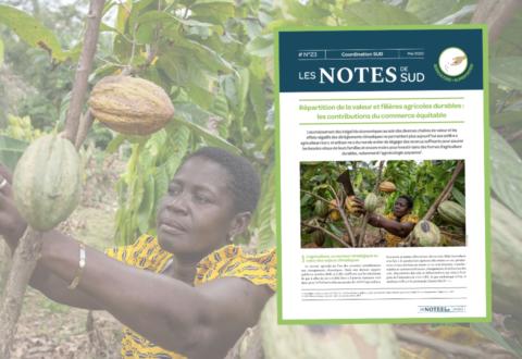 Répartition de la valeur et filières agricoles durables : les contributions du commerce équitable et recommandations aux pouvoirs publics